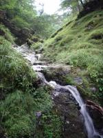 源流の連瀑88