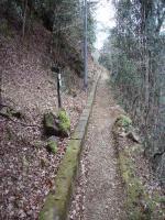 旧トロッコ道