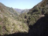 道は山岳地帯へ