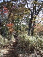 20.京丈~平家間の縦走路
