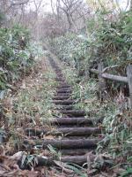高千穂野の急階段