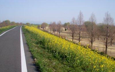 09も春がやってきました@荒川CR