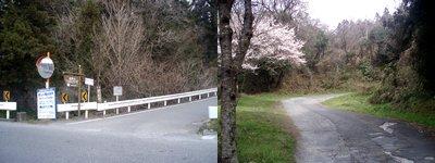 桜谷への登り@皆野町野巻