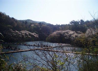 朝から釣り客で賑わう円良田湖