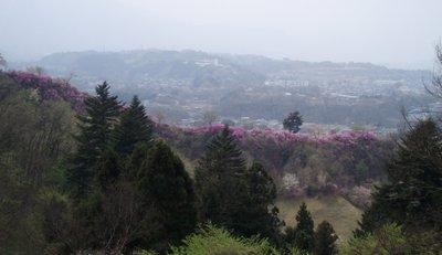 東秩父の山並みを望む@美の山
