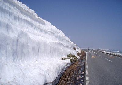 今年も雪が少なくなりました