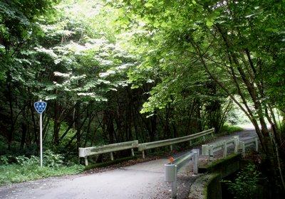 唯一青い林道標識@定峰線