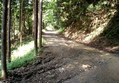 道路を雨が流れて削られた状態@梅本線