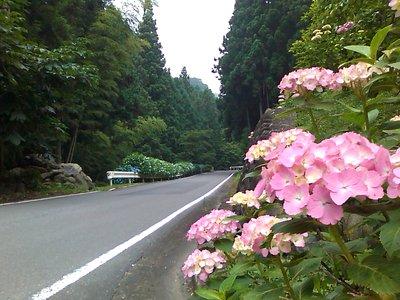 パンク修理ちゅう@竹の谷