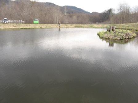 釣り堀厚和2号池
