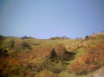 高原の紅葉1001