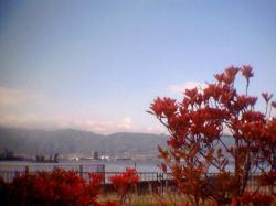 諏訪湖紅葉お勧め001