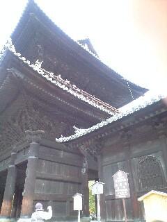 sanmonn