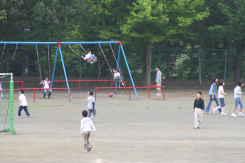 2008_05_19_0001.jpg