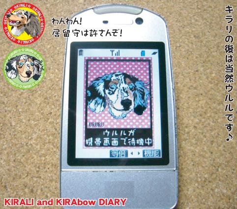 臨時便 携帯3