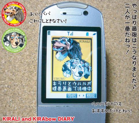臨時便 携帯4
