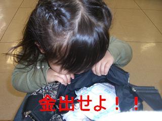 CIMG1387.jpg