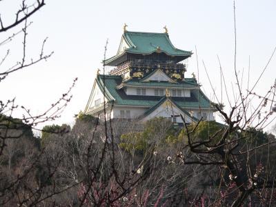 写真キャプション=大阪城公園の梅林を見に行ったときに撮影した大阪城
