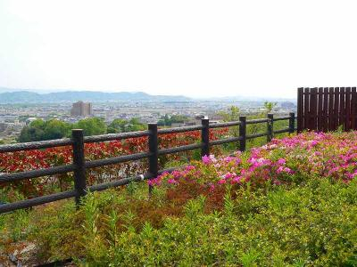 写真キャプション=近畿自動車道の「紀ノ川SA」から見た新緑の和歌山は、実に生気に溢れていた