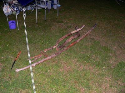 写真キャプション=キャンプ初日に拾ってきた流木は、なかなかの兵(つわもの)であった