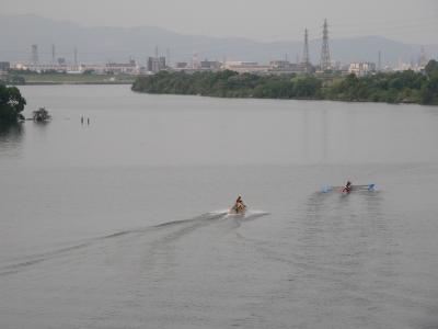 写真キャプション=淀川で練習する神戸大学のボート部の部員たち