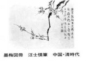 zen336.jpg