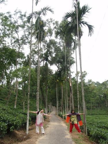 Sylhet13.jpg