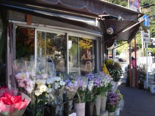 florist around Enoshima