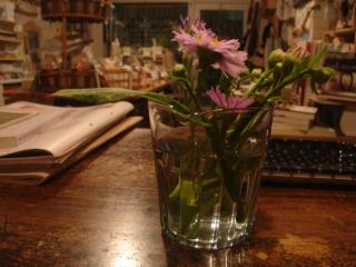 flowers from Toshiko-san 3