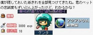 2007.5.2.007.jpg