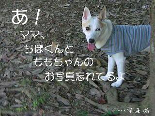 20061009223635.jpg