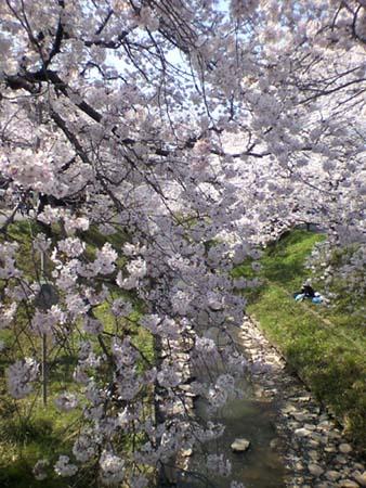 4_6_igagawa_s.jpg
