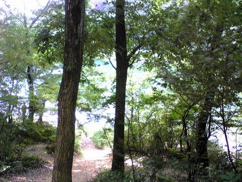 西山トレイル