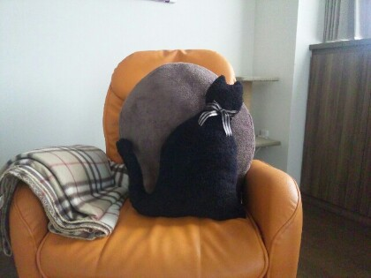 黒猫ちゃん