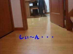 DSC01586_convert_20080308092022.jpg