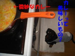 DSC01601_convert_20080309101625.jpg