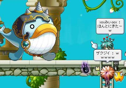 08-dodo0329.jpg