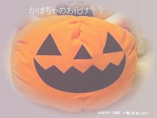 5thハロウィンぬいぐるみXL★コリラックマ★-1