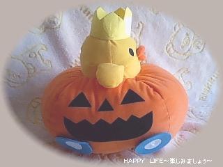 5thキイロイトリのかぼちゃカーぬいぐるみ-3