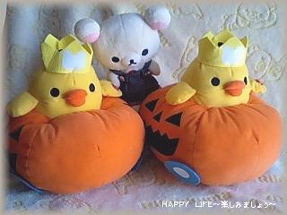 5thキイロイトリのかぼちゃカーぬいぐるみ-5