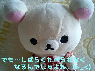 ちこちゃん日記7★お茶祭りとちこちゃんの大好物★-6