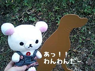 ちこちゃん日記8★お出かけ♪ワンワンと一緒★-2