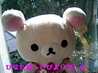 ちこちゃん日記9★ひなたぼっこ日和★-1