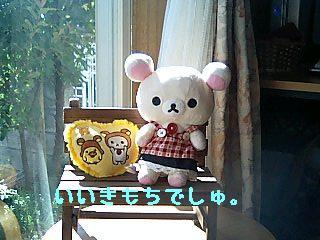 ちこちゃん日記9★ひなたぼっこ日和★-2