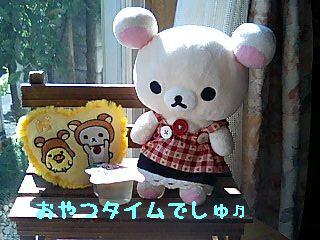 ちこちゃん日記9★ひなたぼっこ日和★-3