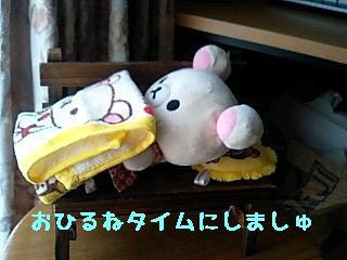 ちこちゃん日記9★ひなたぼっこ日和★-4