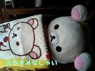 ちこちゃん日記9★ひなたぼっこ日和★-5