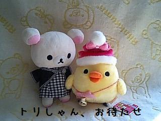 クリスマス限定ぬいぐるみ★キイロイトリ★-2
