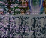20061221185320.jpg