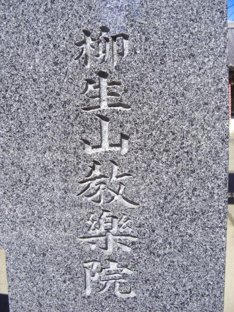 龍君・大日不動10